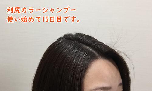 利尻カラーシャンプー15日目